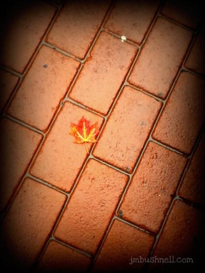 a single leaf in burnsville nc