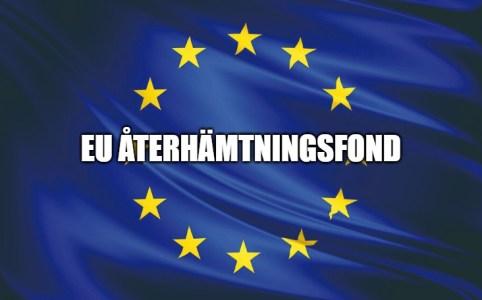 eu återhämtnignsfond_sverigedemokraterna