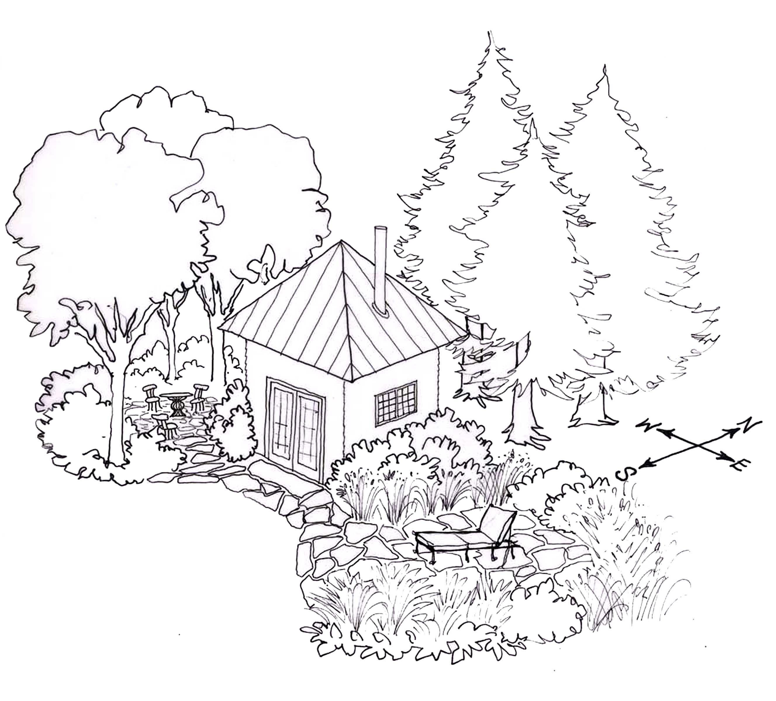 Julie Moir Messervy Design Studio Design Tips Using Trees