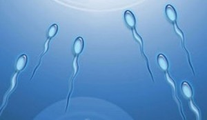 ¿Sabes la velocidad que sale el esperma? Si lees el artículo lo sabrás y otras cosas curiosas del sexo (Foto: ilustración)
