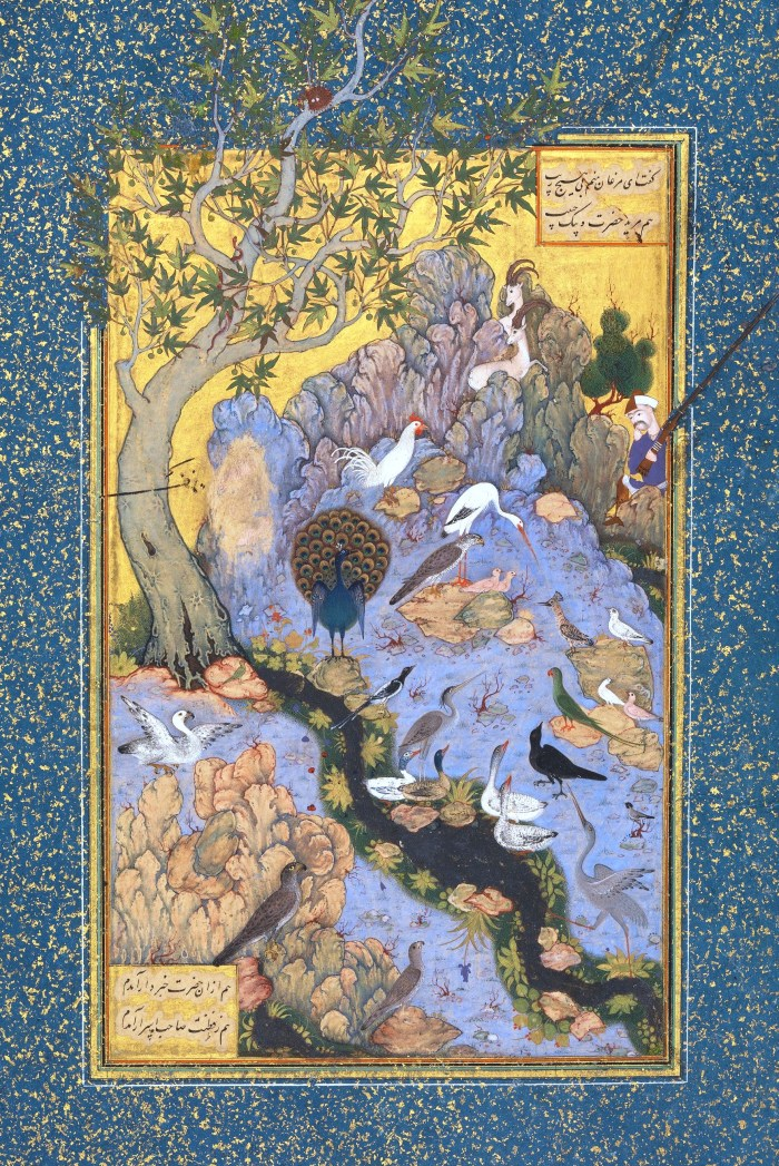 37. 16. Habib Allah, Scene from The Conference of the Birds Persian miniature, 1610.