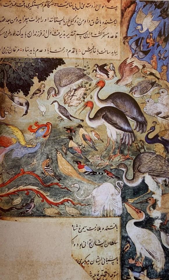 77d. Anonyme, Lahore, 1598 (illustration pour le Cantique des Oiseaux)