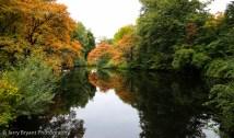 tiergartenpark-1