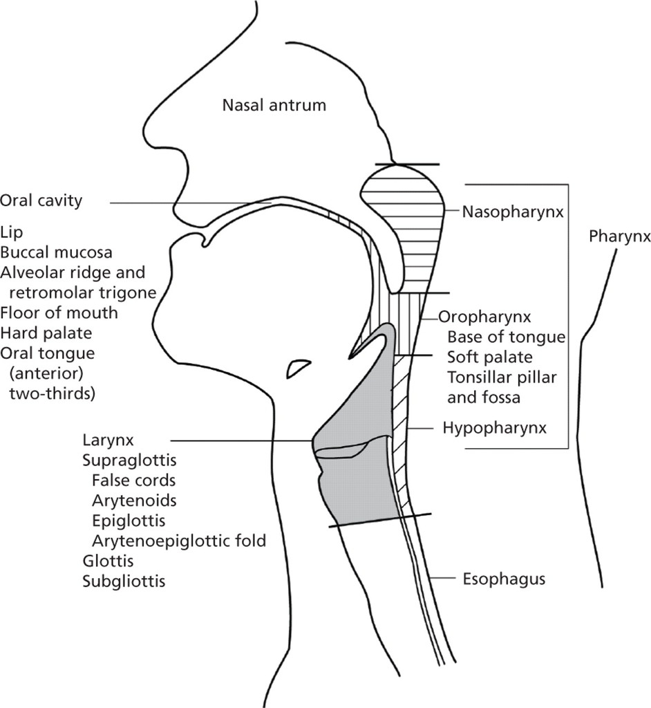 Mucosal Melanoma of the Head and Neck in: Journal of the
