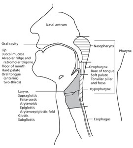 Head and Neck Cancers in: Journal of the National