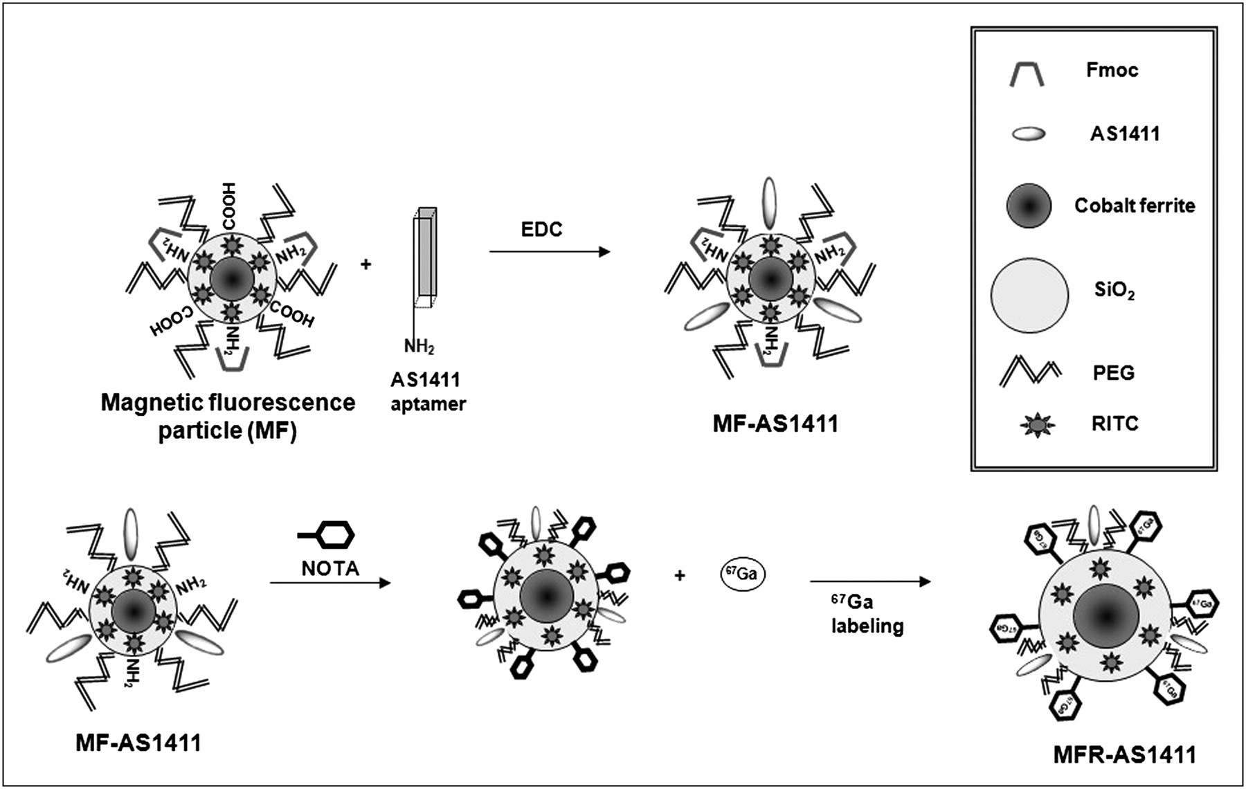 A Nucleolin-Targeted Multimodal Nanoparticle Imaging Probe for Tracking Cancer Cells Using an
