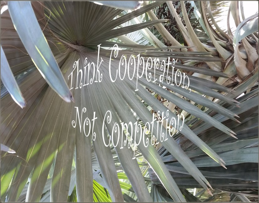 Think Cooperation, Not Competition – Jo Calk
