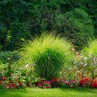 Création et entretien de massifs fleuris   Jo votre jardinier paysagiste à Chevillon, Charny Orée de Puisaye, Yonne (89)   www.jo-votre-jardinier-paysagiste.fr