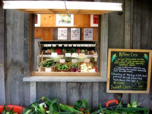 Photo of Vermont Farm Stand by Joana Miranda