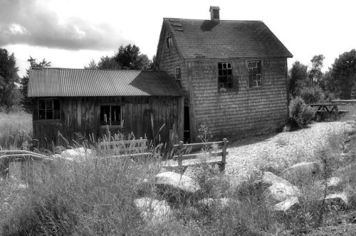 Black and white photo of dilapidated shack in NH taken by Joana Miranda