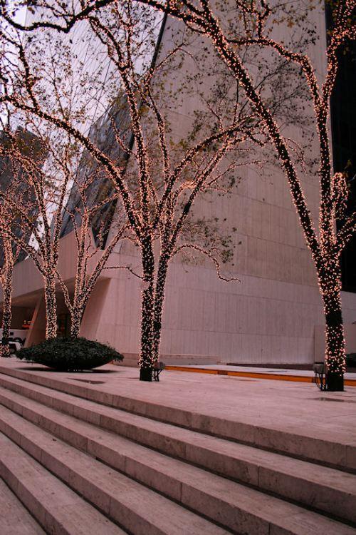 Photo of festively decorated trees in Midtown taken by Joana Miranda