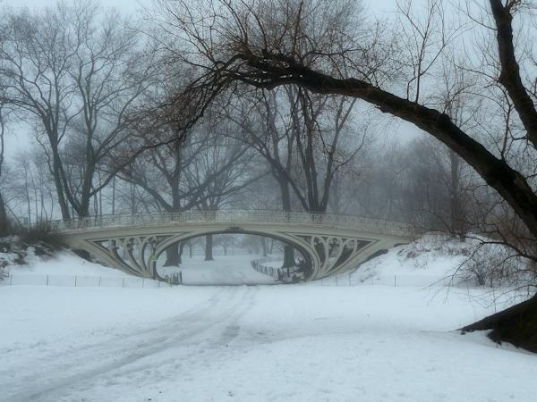 Photo of bridge near Jackie Onassis Reservoir on a foggy day, taken by Joana Miranda