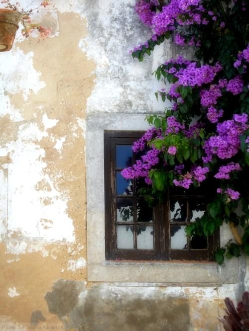 Window in Obidos