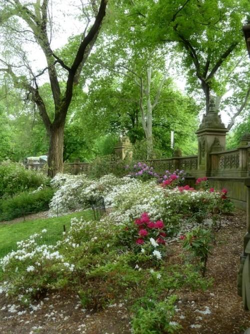 Central Park garden at Bethesda fountain
