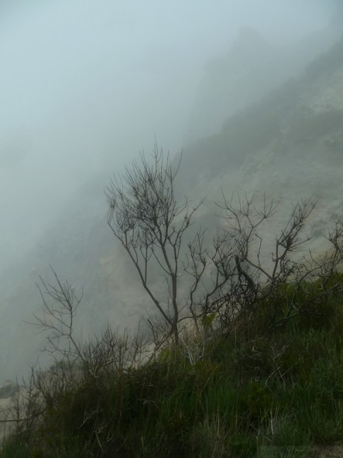 bluff in the fog3