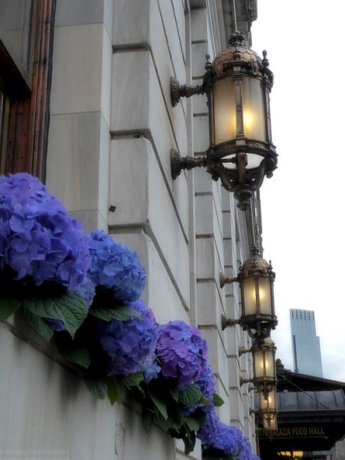 The Plaza Hotel in springtime