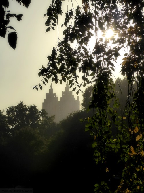 san-remo-towers-in-the-early-fall