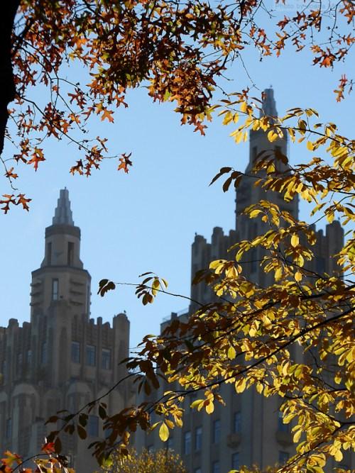 art-deco-building-through-the-fall-foliage