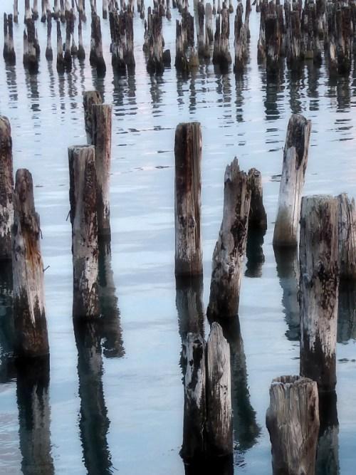 wood-pylons