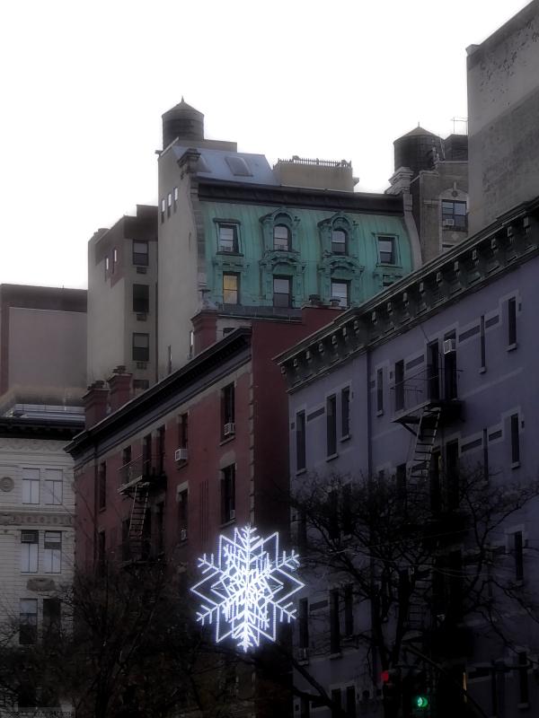Photo of star holiday decoration above Columbus Avenue, taken by Joana Miranda