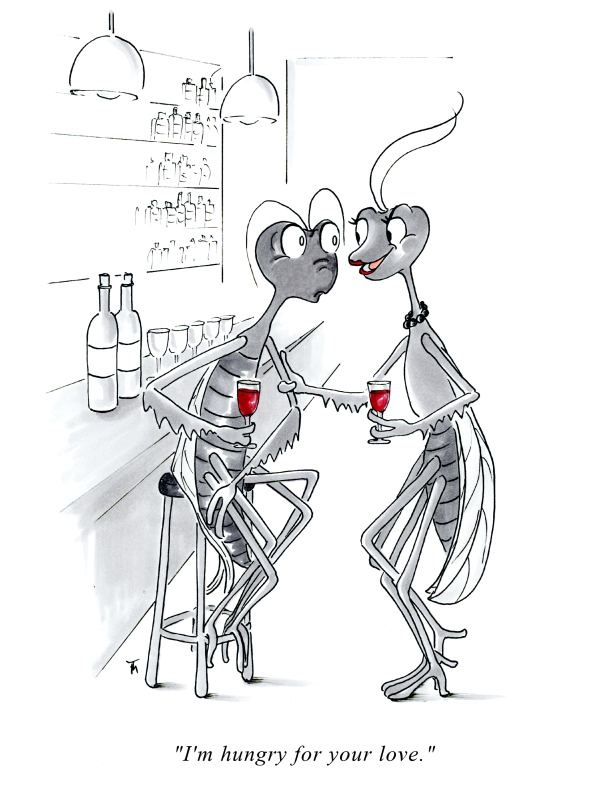 Funny Praying Mantis cartoon greeting card by Joana Miranda