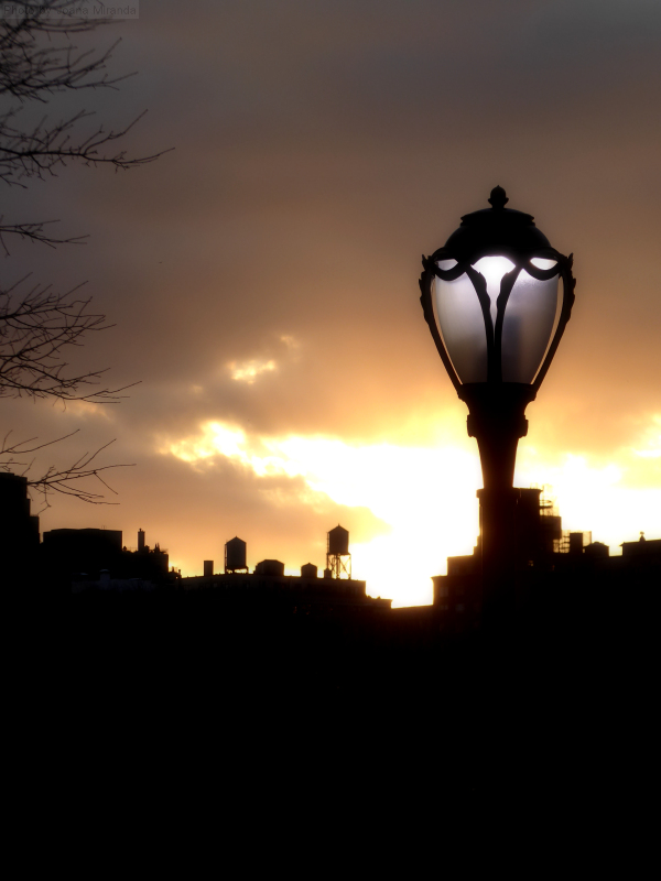 Photo of lamp post and water towers against the Upper West Side sunset, taken by Joana Miranda