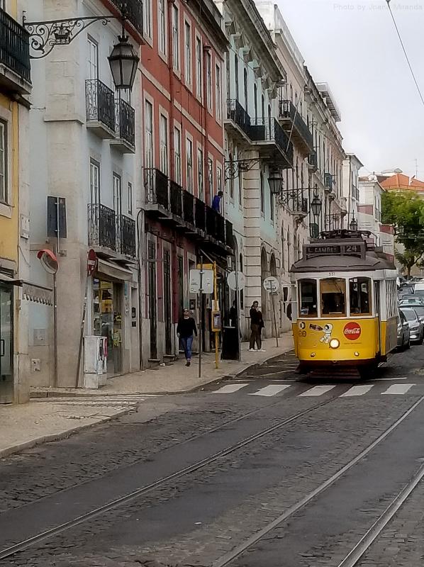 Tram car along the Mirador de Sao Pedro de Alcantra, Lisbon