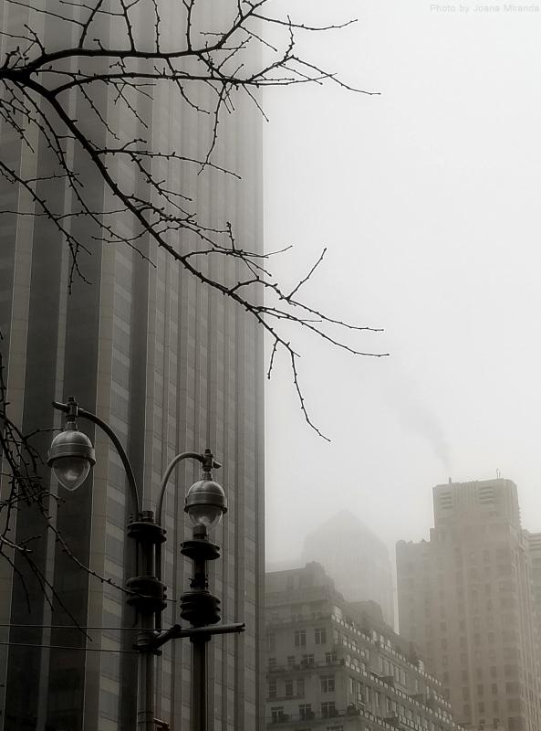 Photo of a foggy day in New York City by Joana Miranda