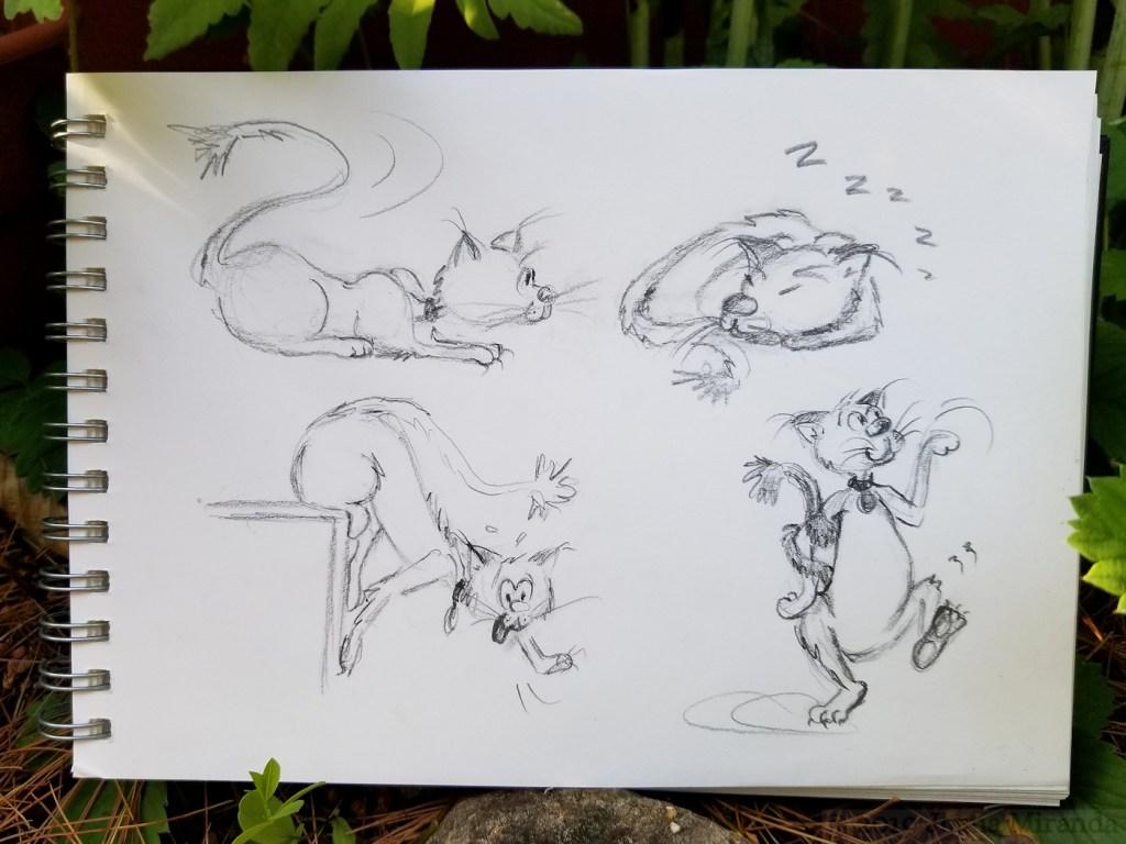 Photo-of-cat-cartoon-sketches-by-Joana-Miranda