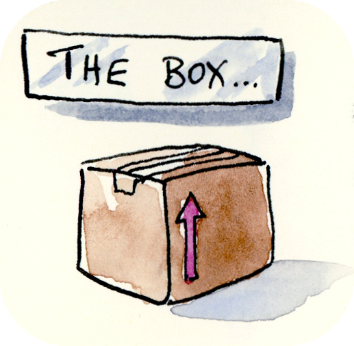 Outside the Box cardboard box freehand drawing illustration by Joana Miranda
