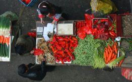 hongjiang-hunan-market