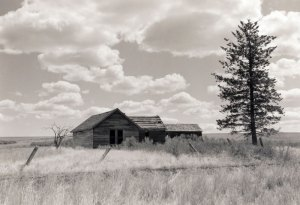 1995013003 WA Farmhouse 1995