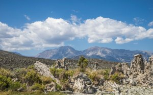 20140540DC Sierra Nevada, CA 2014