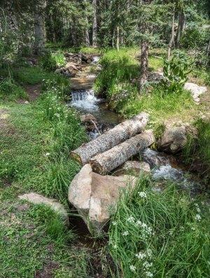 20170351DC Spring Runoff, NM 2017