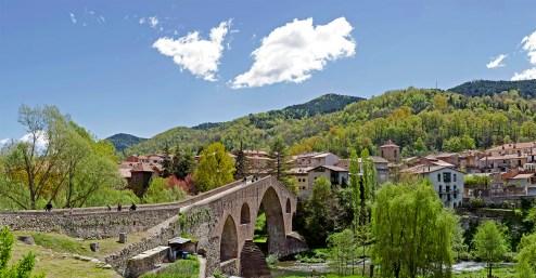 Pont (Sant Joan de les Abadesses - maig de 2014)