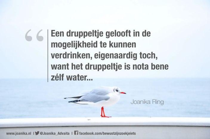 Quote van Joanika met een metafoor over wat je gelooft