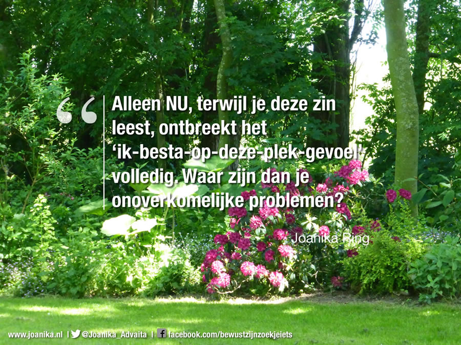quote van Joanika over problemen