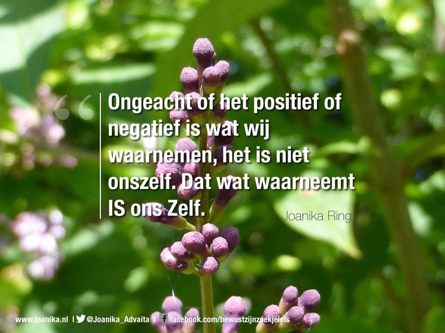 Quote van Joanika over waarneming