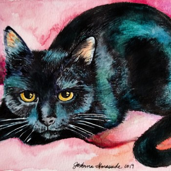 Billie the Black Cat