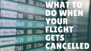 What to Do When Your Flight Gets Cancelled