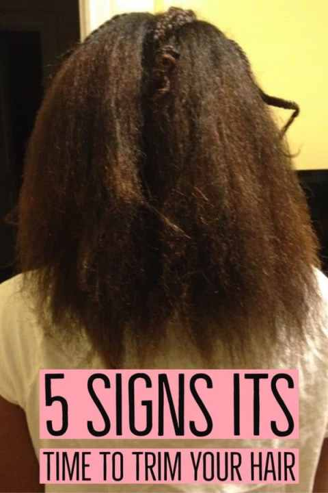 5 Signs it's Time to Trim Your Natural Hair