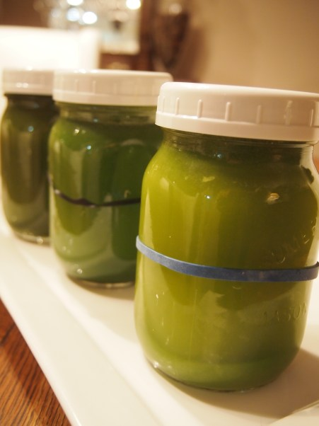 Green Juice ready to take on the road - Copyright Jo-Ann Blondin