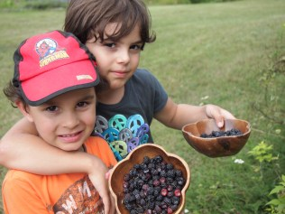 Asha and Kameron - proud of their black raspberry picking. Just love this image of sibling love. Copyright Jo-Ann Blondin
