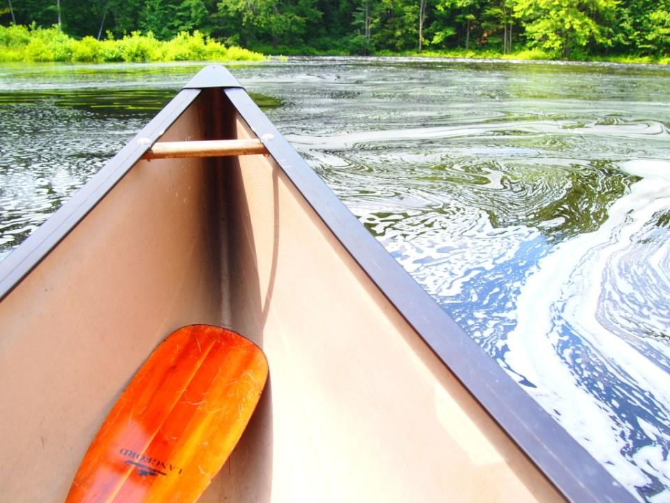 Summer Adventures in my Langford Canoe. Copyright Jo-Ann Blondin