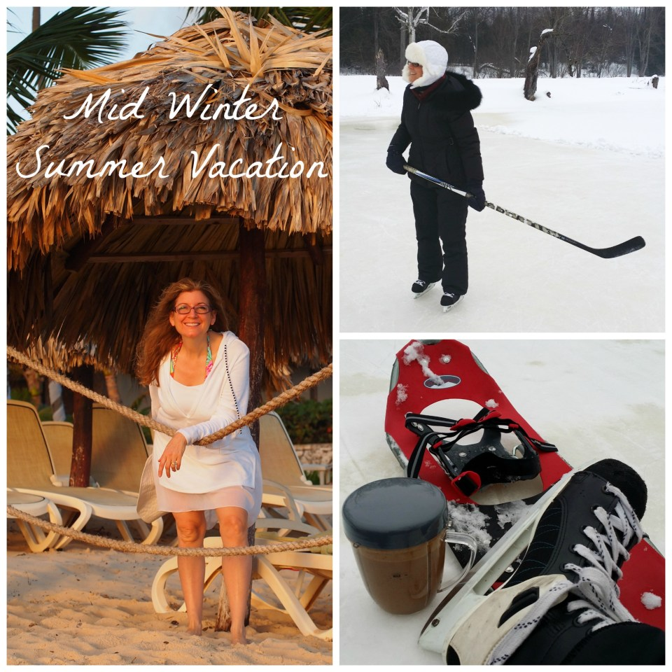 Mid Winter Summer Vacation Copyright Jo-Ann Blondin