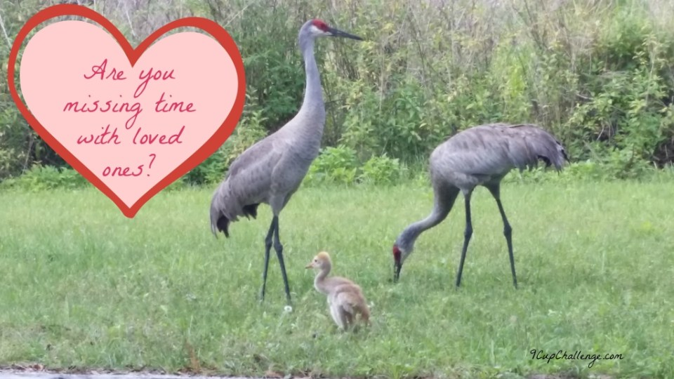 Missing time with loved ones - Copyright Jo-Ann Blondin