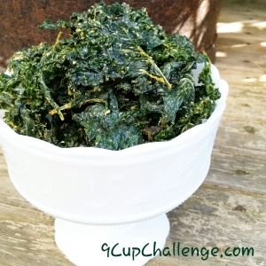 Kale Chips Light on the Heat 9CupChallenge.com