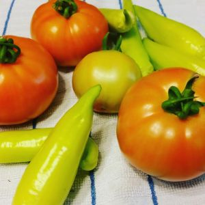 Summer garden harvest with tomatoes and peppers