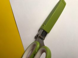 Herb shears with cover