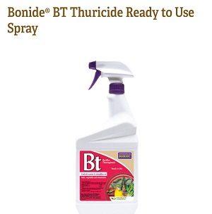 BT Spray